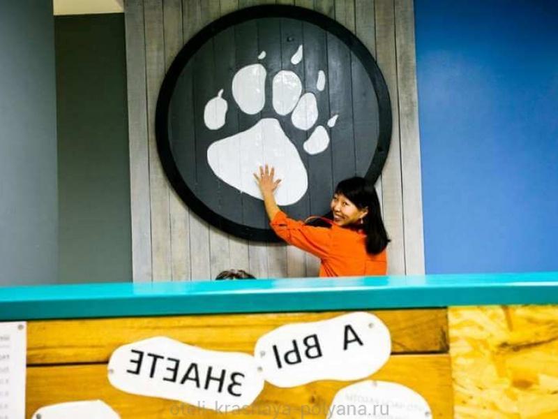 priyut-pandy-khostel-3-stojka-registracii